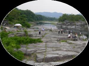 Midori_3_tomisaka_20150623_mod_600